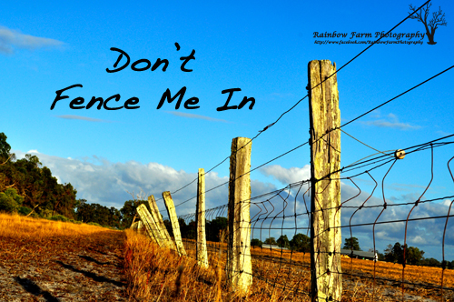 don't fence me in logon