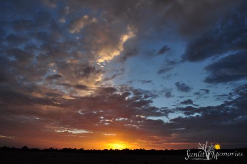 SRS24459 210313 sunrise