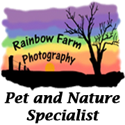 Rainbow Farm Photography Blog