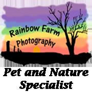 Rainbow Farm Photography Blog
